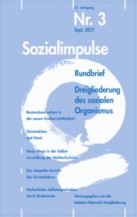 Cover Sozialimpulse 2021-3